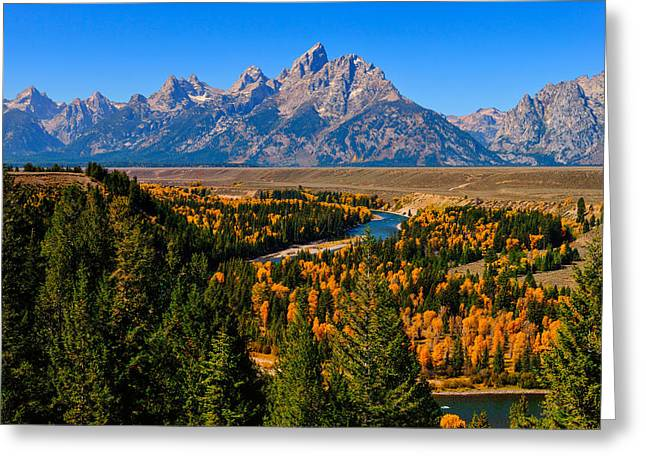 Grand Tetons Greeting Cards - Snake River Overlook Greeting Card by Greg Norrell