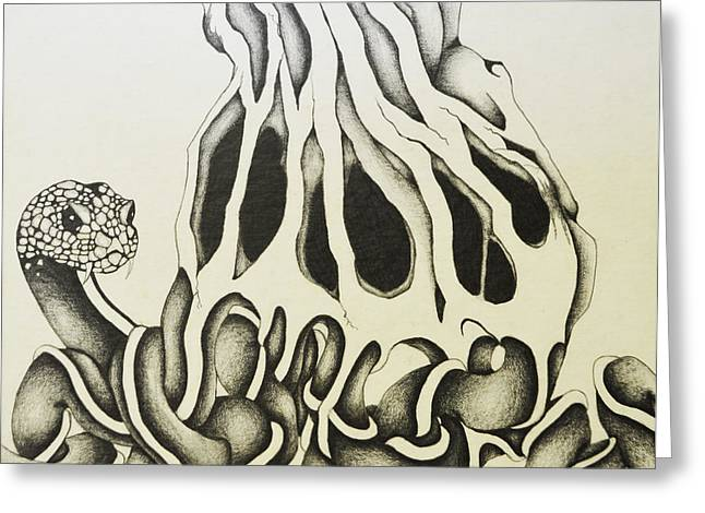 Tree Roots Drawings Greeting Cards - Snake Roots Greeting Card by Daniel P Cronin
