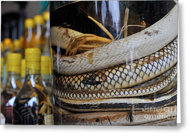 Snakes In Snake-flavoured Alcohol Bottles  Greeting Card by Sami Sarkis