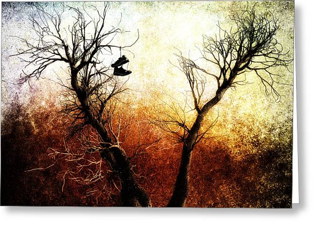 Original Photographs Greeting Cards - Sneakers In The Tree Greeting Card by Bob Orsillo