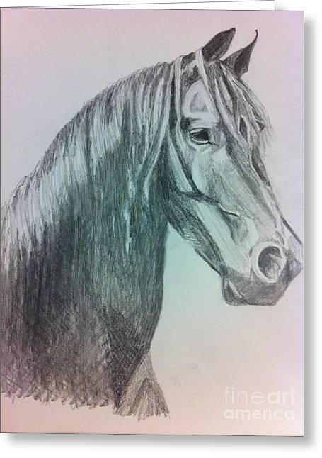 Custom Horse Portrait Greeting Cards - Snic Greeting Card by Elesha McCarthy