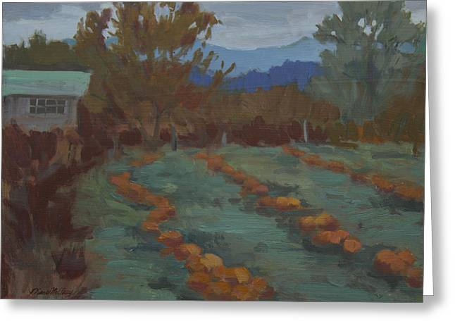 Patch Paintings Greeting Cards - Snohomish Pumpkin Patch Greeting Card by Diane McClary