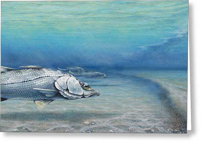 Anna Maria Island Greeting Cards - Snook At Bean Point Greeting Card by Joan Garcia