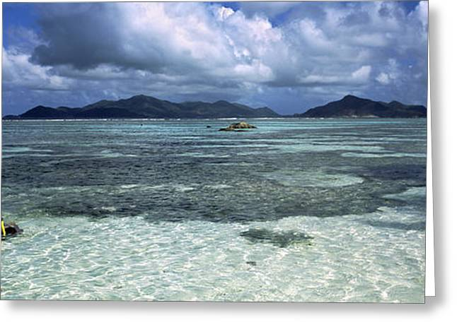 Snorkel Greeting Cards - Snorkeler In The Clean Waters On Anse Greeting Card by Panoramic Images
