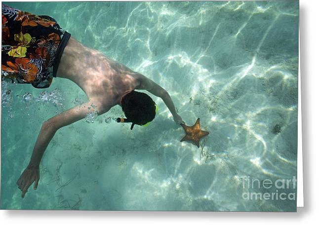 Snorkeller touching starfish on seabed Greeting Card by Sami Sarkis
