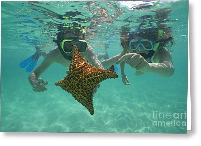 18-19 Years Greeting Cards - Snorkellers holding a four legs starfish Greeting Card by Sami Sarkis