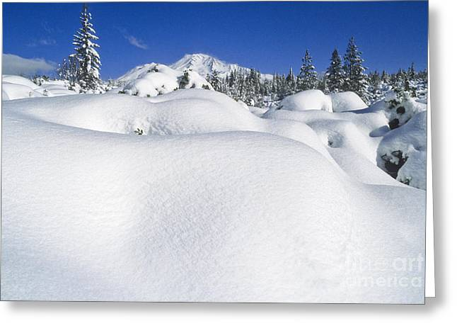 Snow-covered Landscape Greeting Cards - Snow And Mt. Shasta Greeting Card by Richard and Ellen Thane