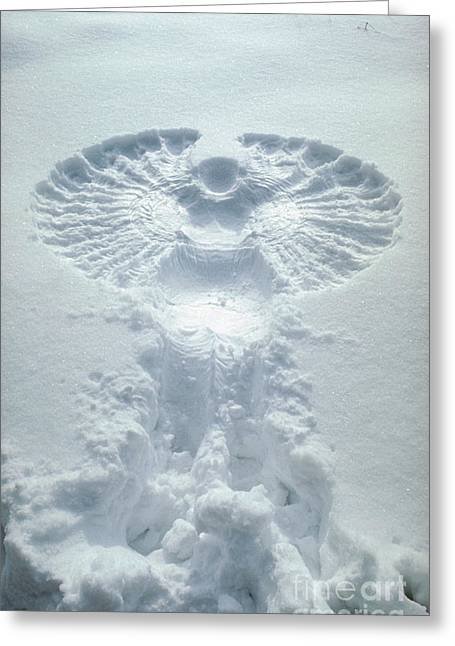 Snow Scenes Greeting Cards - Snow Angel Greeting Card by Bill Longcore