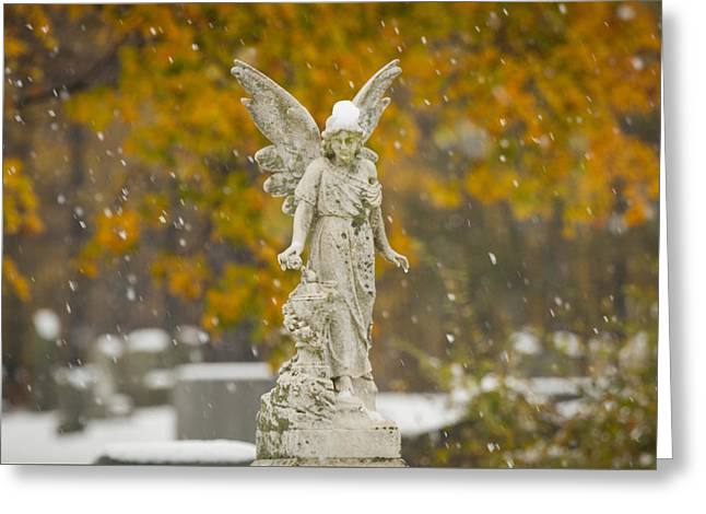 Snow Angel Greeting Card by Dan Dangler