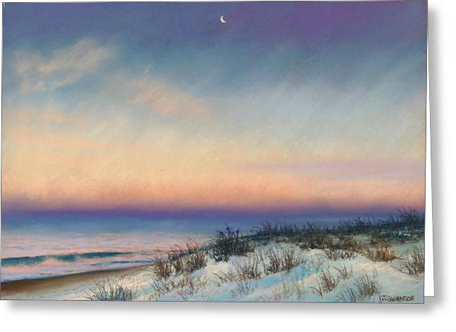 Atlantic Beaches Pastels Greeting Cards - Snow at Bay Head Greeting Card by Joan Swanson