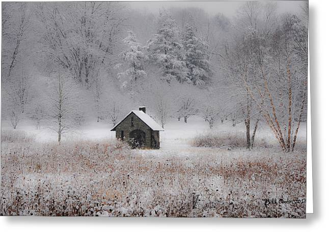 Bill Cannon Greeting Cards - Snow at Morris Arboretum Greeting Card by Bill Cannon