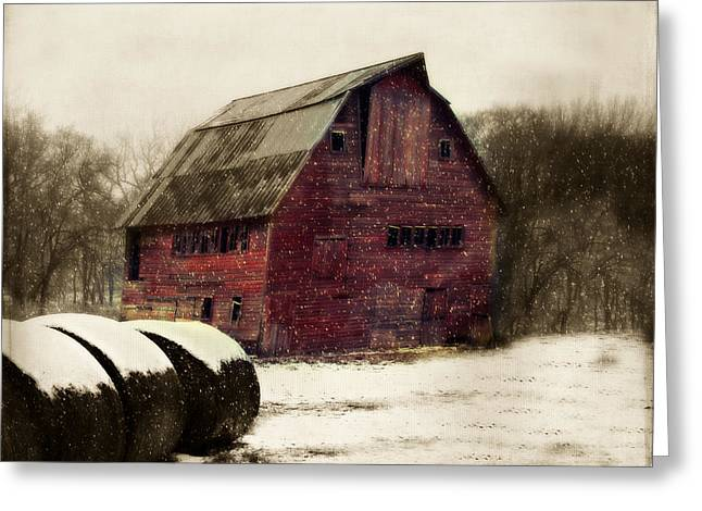 Barn Yard Photographs Greeting Cards - Snow Bales Greeting Card by Julie Hamilton