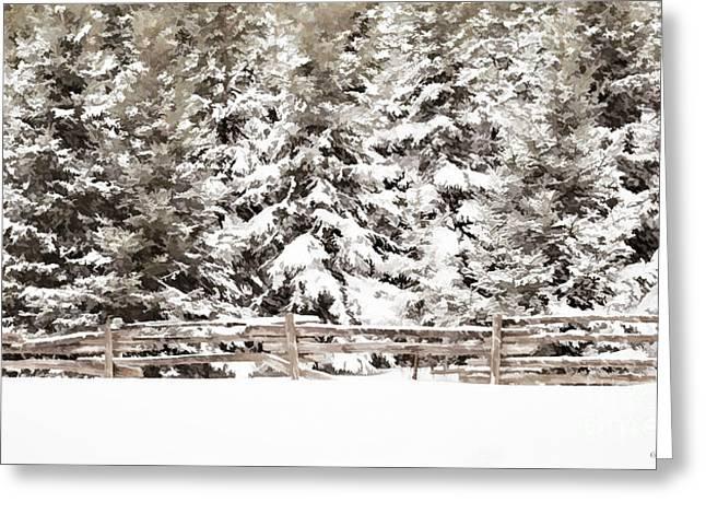 Split Rail Fence Greeting Cards - Snow Blanket Greeting Card by Barbara McMahon