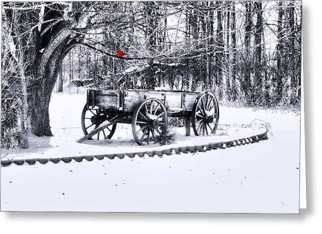 Canvas. Poster. Greeting Card. Christmas Card. Old Wagon. Vintage Wagon. Antiques. Woods. Trees. Forest. Path. Greeting Cards - Snow Bound Greeting Card by Mary Timman