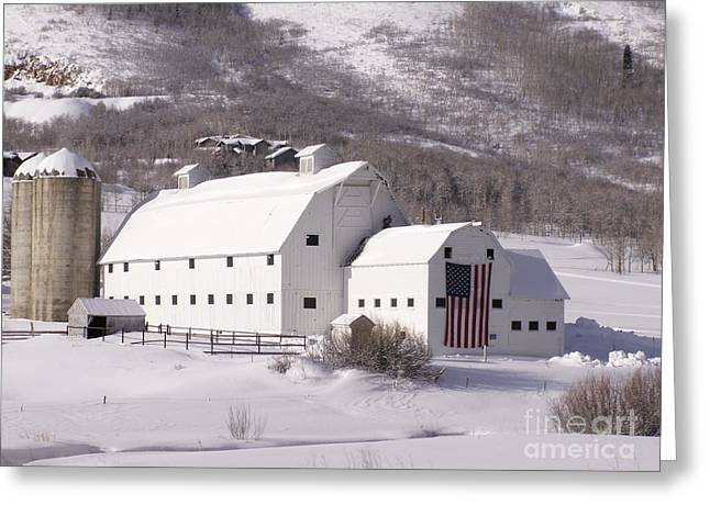 Snow Scene Landscape Greeting Cards - Snow Bound Greeting Card by Sandy Molinaro