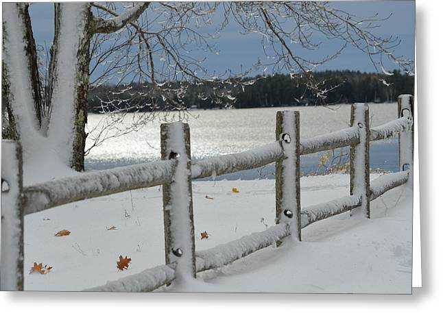 Winter In Maine Greeting Cards - Snow Brushed Fence Greeting Card by Lena Hatch