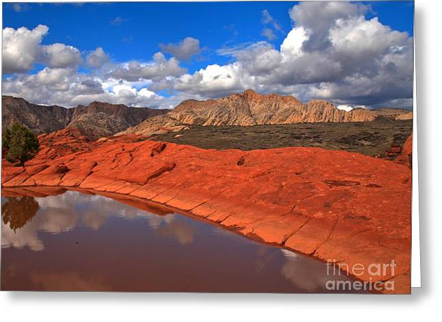 Southern Utah Greeting Cards - Snow Canyon Reflections Greeting Card by Adam Jewell