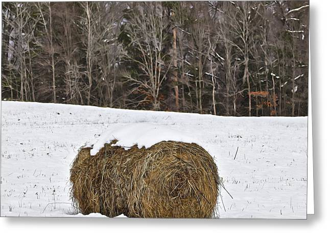 Hay Bales Greeting Cards - Snow Capped Hay Bale Greeting Card by Patrick M Lynch