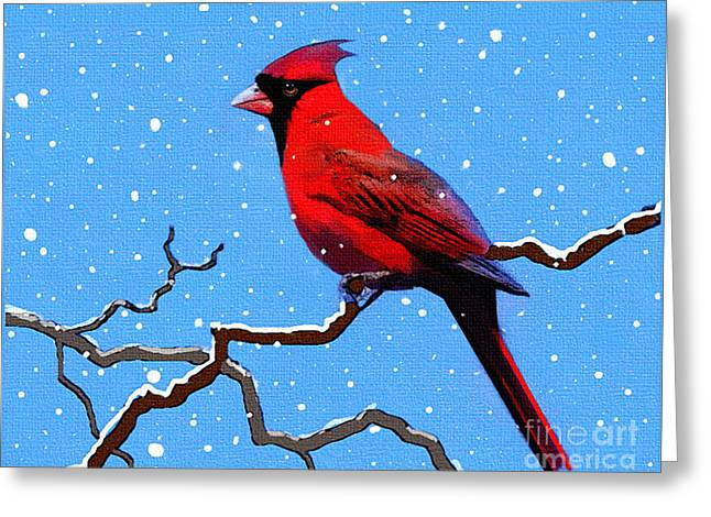 Songbird Prints Greeting Cards - Snow Card Greeting Card by Robert Foster