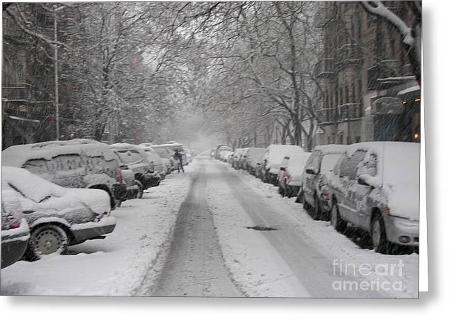 James Dolan Greeting Cards - Snow Cover Greeting Card by James Dolan