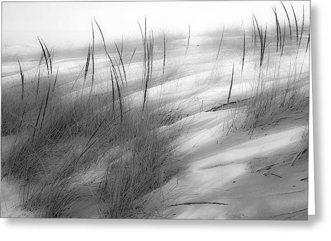 Drifting Snow Greeting Cards - Snow Covered Beach Greeting Card by Sherry Piet