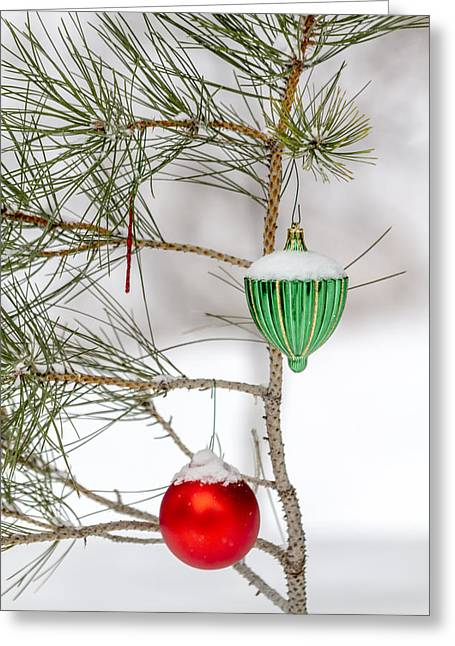 Snowy Day Greeting Cards - Snow Covered Christmas Ornaments Greeting Card by Teri Virbickis