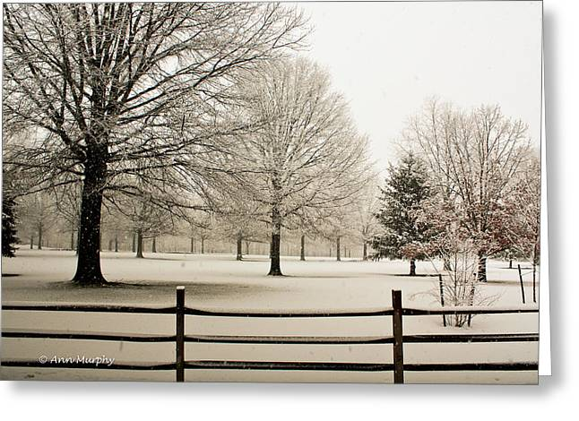 Snow-covered Landscape Greeting Card by Ann  Murphy