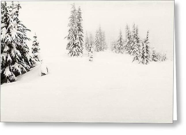 Days Pass Greeting Cards - Snow Covered Landscape At Stevens Pass Greeting Card by Panoramic Images