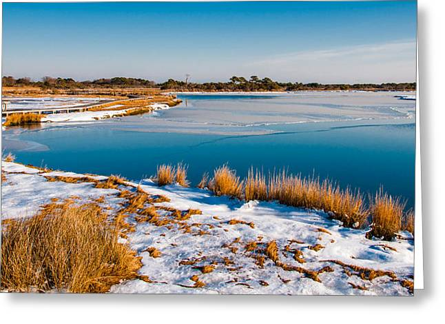 Atlantic Beaches Pastels Greeting Cards - Snow covered marsh at Assateague Island National Seashore Maryland Greeting Card by Jon Bilous