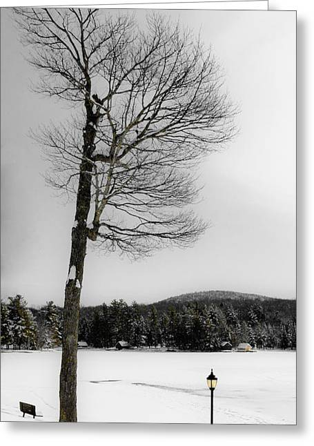 Patterson House Greeting Cards - Snow Covered Old Forge Pond Greeting Card by David Patterson