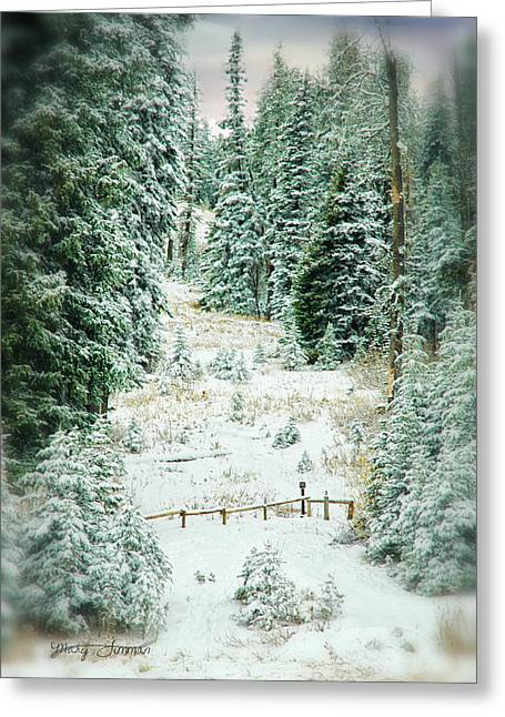 Snow Covered Path Greeting Card by Mary Timman