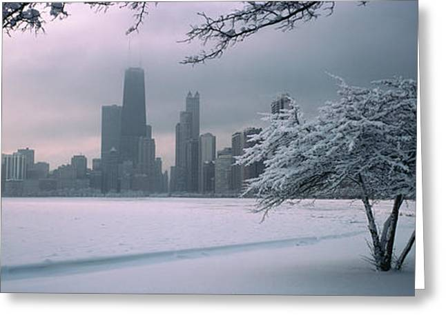 Winter Lake Greeting Cards - Snow Covered Tree On The Beach Greeting Card by Panoramic Images