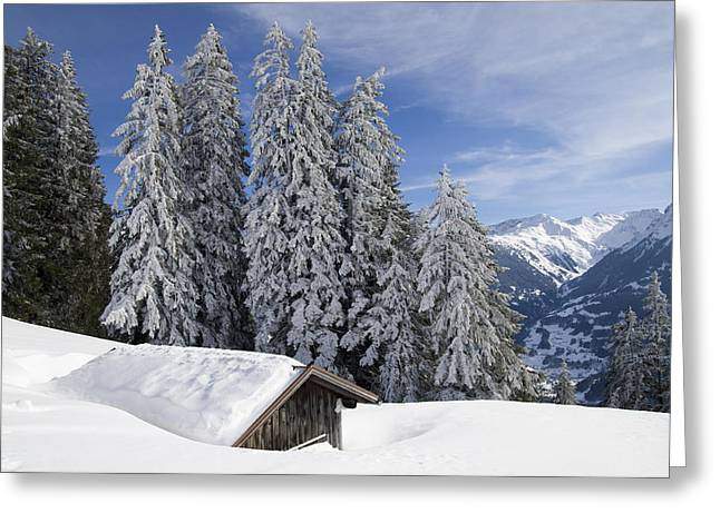Snow covered trees and mountains in beautiful winter landscape Greeting Card by Matthias Hauser