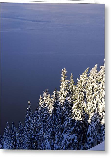 Crater Lake Greeting Cards - Snow Covered Trees At South Rim, Crater Greeting Card by Panoramic Images