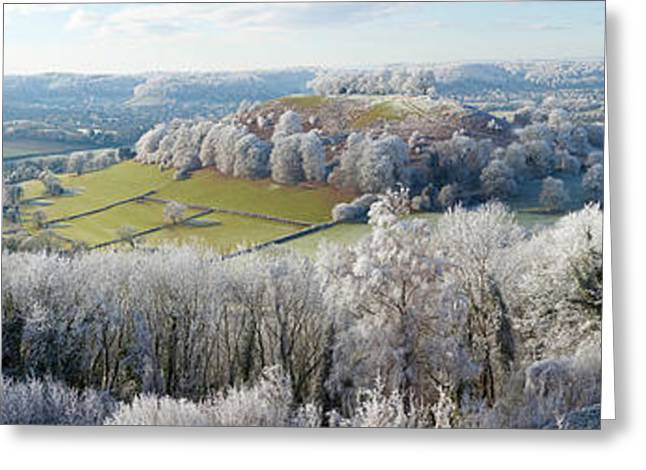 Cold Day Greeting Cards - Snow Covered Trees In A Valley Greeting Card by Panoramic Images