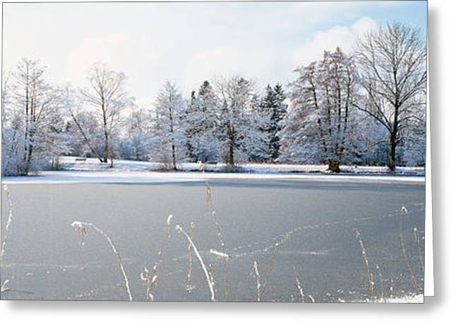 Bare Trees Greeting Cards - Snow Covered Trees Near A Lake, Lake Greeting Card by Panoramic Images