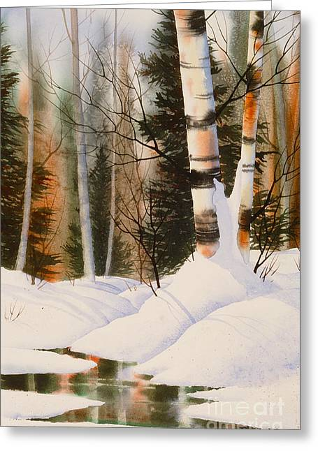 Snow Crevice Greeting Card by Teresa Ascone