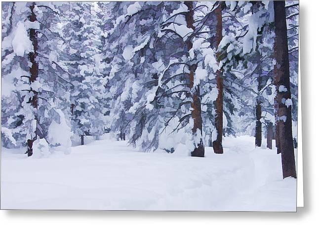 Snow-dappled Woods Greeting Card by Don Schwartz