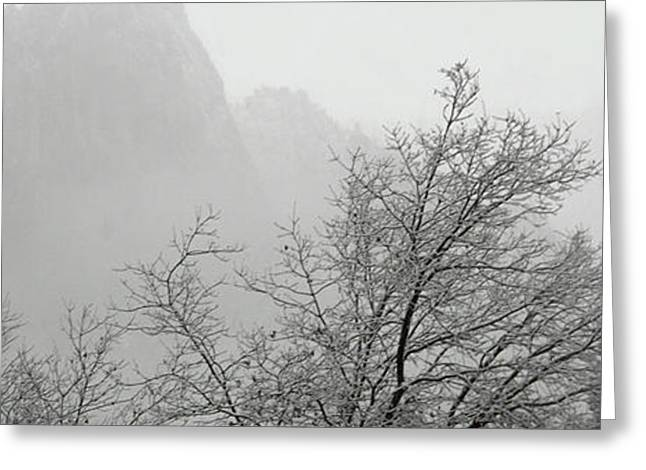 Snow Day 2 Greeting Card by Joanna Pippen