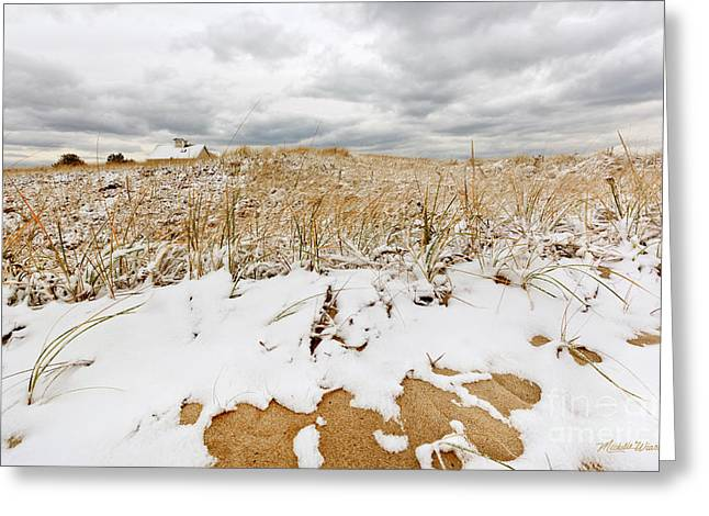 Snowy Day Greeting Cards - Snow Day at the Beach Greeting Card by Michelle Wiarda