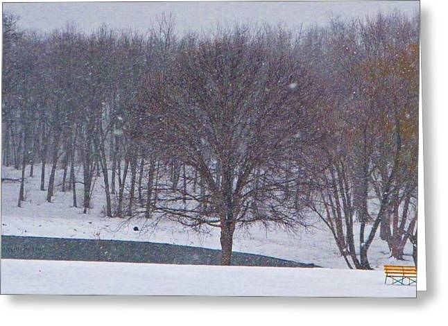 Sleet Greeting Cards - Snow Day Greeting Card by Chris Berry
