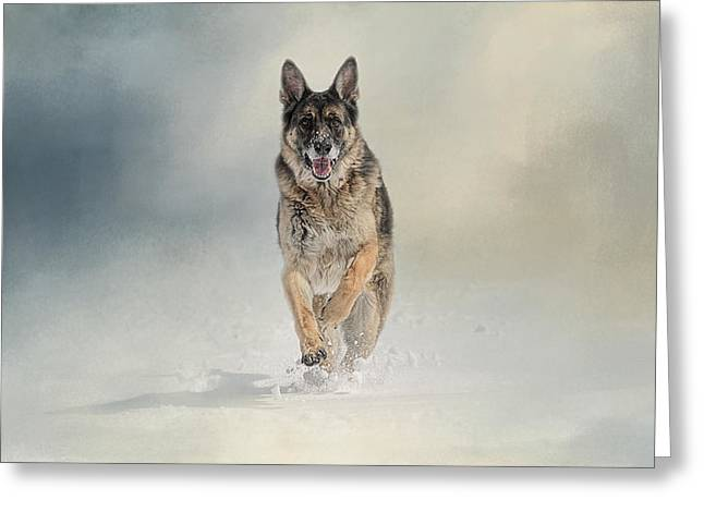 Gsd Greeting Cards - Snow Day For The Shepherd Greeting Card by Jai Johnson