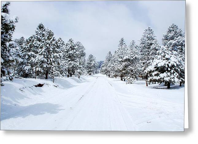Snow-covered Landscape Greeting Cards - Snow Day Greeting Card by Pam Garcia