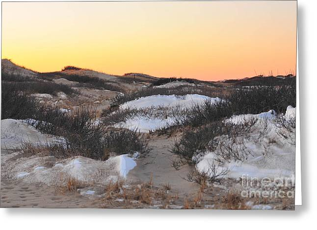 Catherine Reusch Daley Fine Artist Greeting Cards - Snow Dunes Sunset  Greeting Card by Catherine Reusch  Daley