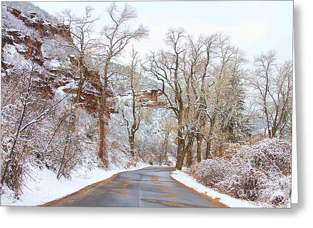 Snow Tree Prints Greeting Cards - Snow Dusted Colorado Scenic Drive Greeting Card by James BO  Insogna