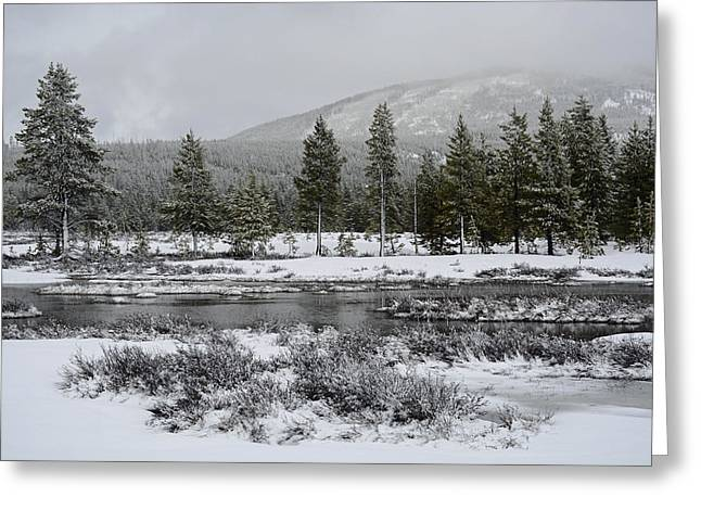 Snow-dusted Gibbon Meadows In Yellowstone Greeting Card by Bruce Gourley