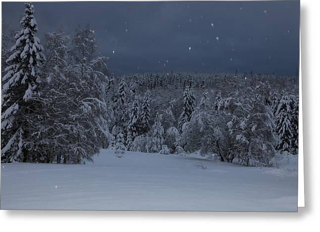 Snow falling in a forest Greeting Card by Intensivelight