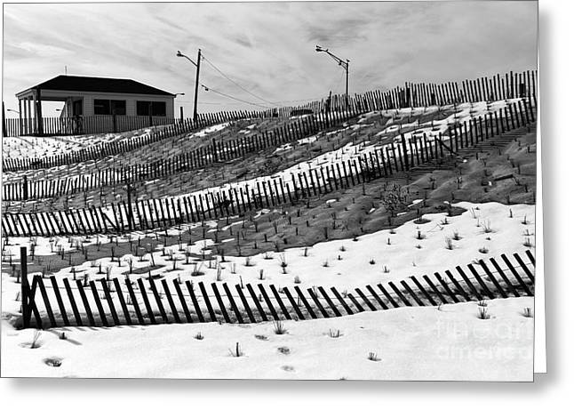 Photography Galleries On Line Greeting Cards - Snow Farm mono Greeting Card by John Rizzuto