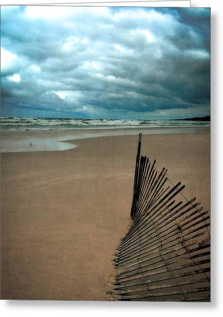 Board Fence Greeting Cards - Snow Fence and Seagulls Greeting Card by Michelle Calkins