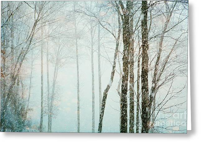 Flurries Greeting Cards - Snow Flurries Greeting Card by Kim Fearheiley